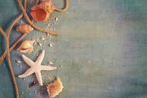 Marine objects - shells, starfish