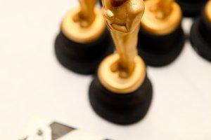 Golden oscars for winners