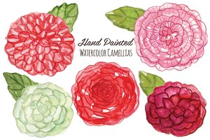 Watercolor Flowers -Camellias