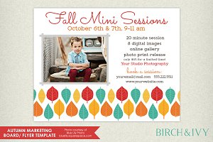 Fall Mini Session/ Flyer Template