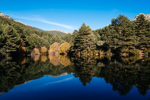 Reflections in Calm Lake