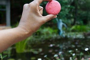 Holding a macaron