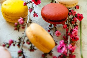 Vintage flowers + Macarons