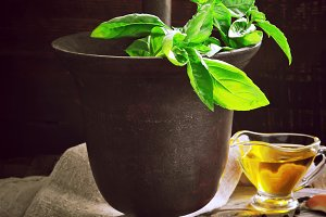 italian recipe ingredients for basil pesto on a dark background,