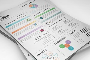 Infographic Resume/CV