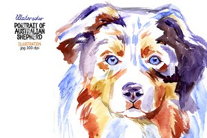 Watercolor Australian shepherd