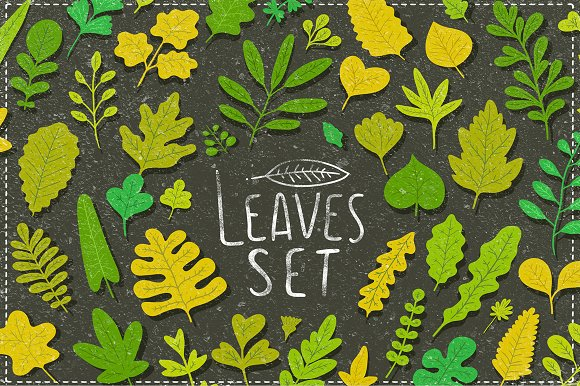 Vector leaves. Nature elements. - Illustrations