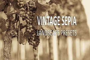 15 Vintage Sepia Landscape Presets