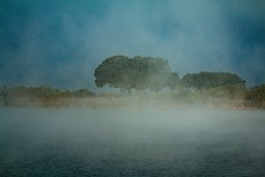Dark morning on a river with fog