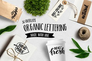 Set of Organic Overlays & Icons