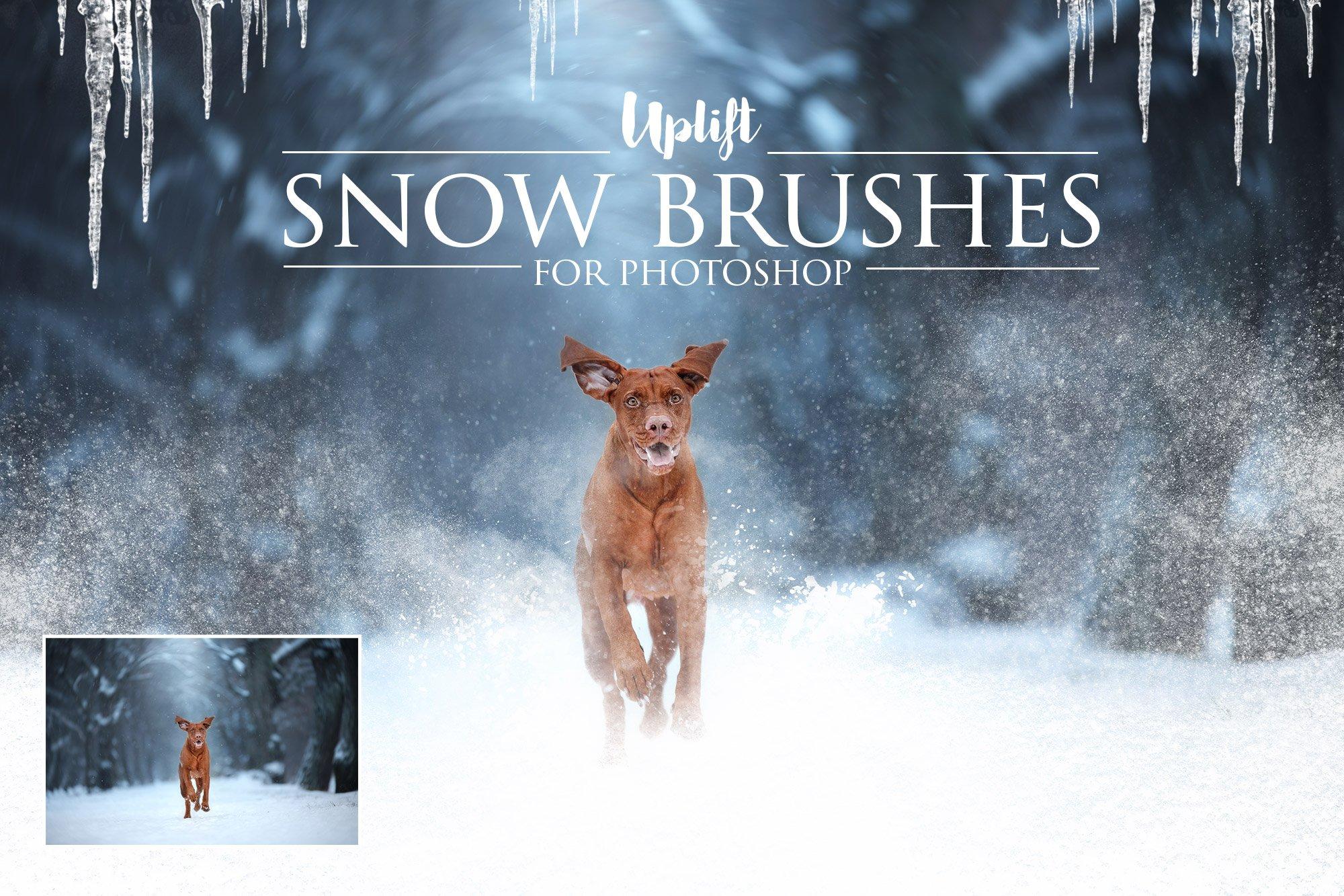 Brush Paint Photoshop Action