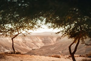 View from Oasis on Negev