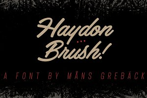 Haydon Brush