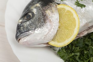 Raw fish with lemon and green on a plate with parsley prepared to be cooked. Horizontal studio shot