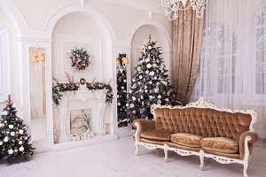 Winter Christmas trees with New Year ornament