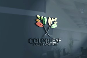 Color Leaf logo