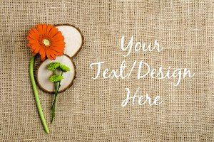 Rustic Orange Daisy on Burlap Mockup