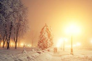 Fabulous winter city park