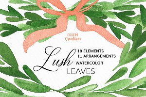 Olive Branches Watercolor Clipart