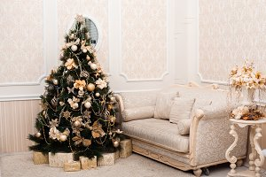 Holiday living room in apricot colors