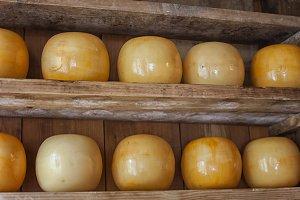 Gouda cheese in shop