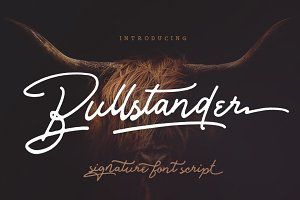 Bullstander 6 Font Set - 60% OFF