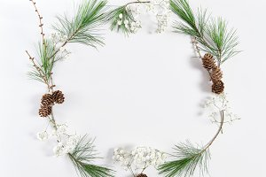 Frame pine tree branches cones