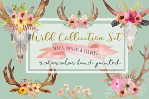 Wild Collection - Skulls and Antlers