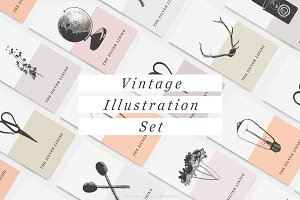 Vintage Illustration Set