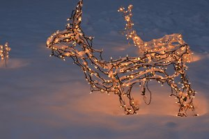 Christmas reindeer lights snow night