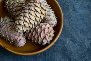 Cedar cones with pine nuts in a bowl close-up.