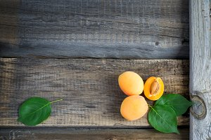 Rural garden summer background with ripe apricots