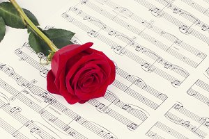 Rose laying on sheet music