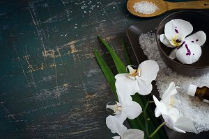 Blooming white orchid  in bowl of water and SPA setting. Space f