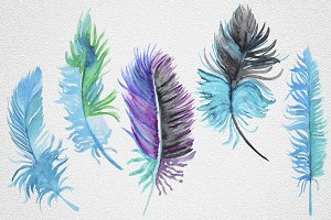 Feather set12