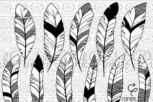 Doodle Feather Clipart and Vectors