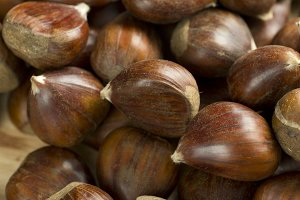 Chestnuts photographed close up.