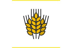 Wheat ears color icon. Vector