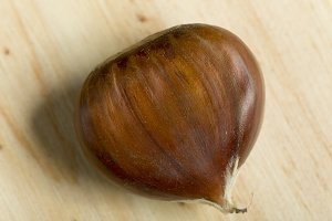 Chestnut close-up photograph.