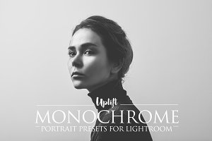 SALE! MONOCHROME Portrait Presets