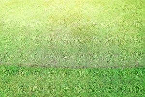 Golf field background