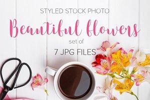 Beautiful flowers photo set