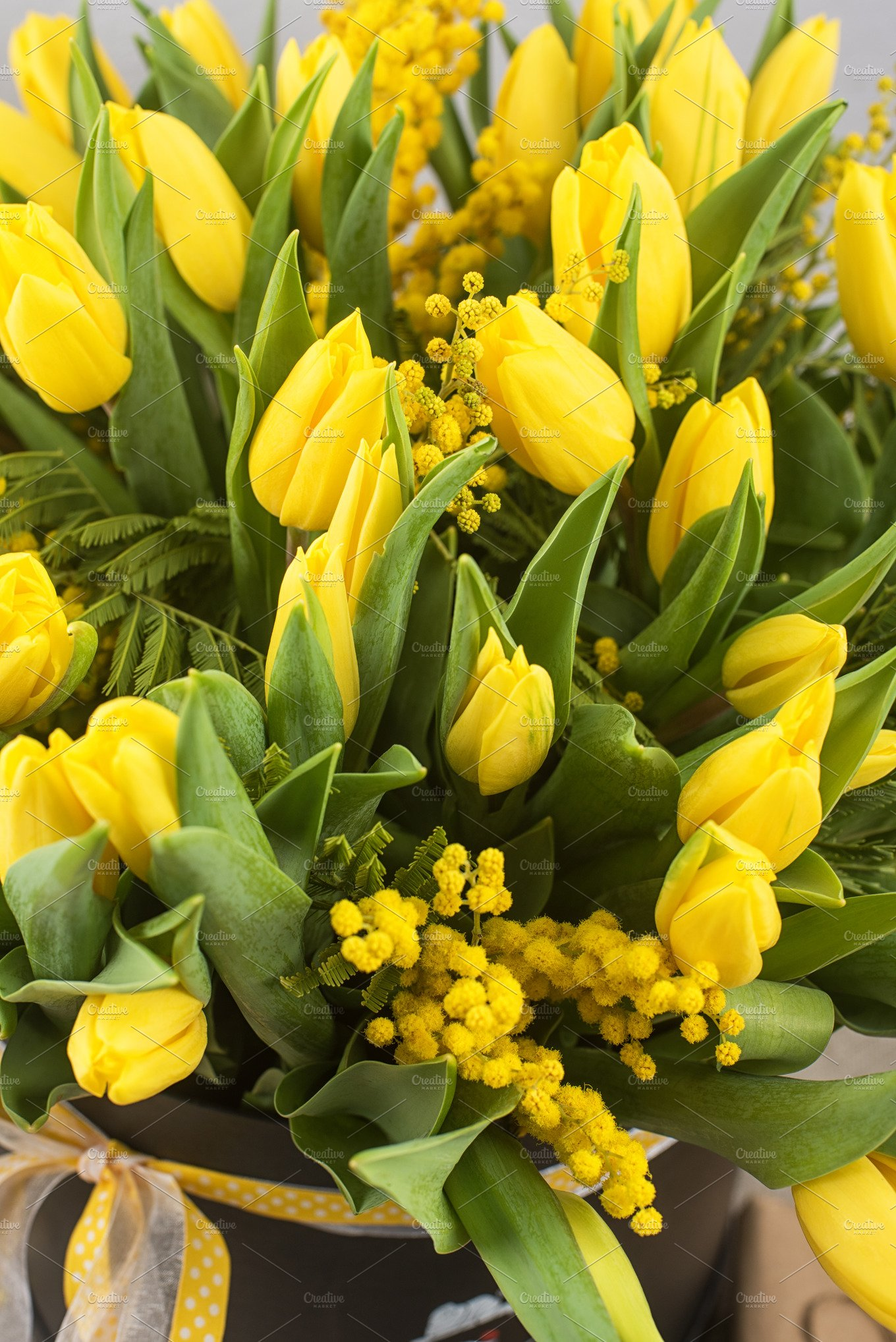 Bright Spring Bouquet Of Tulips And Mimosa Flowers Holiday Photos