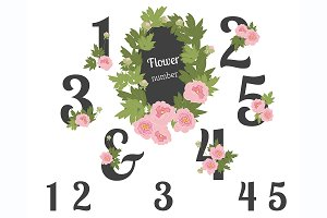 №221 Peon Flower numbers