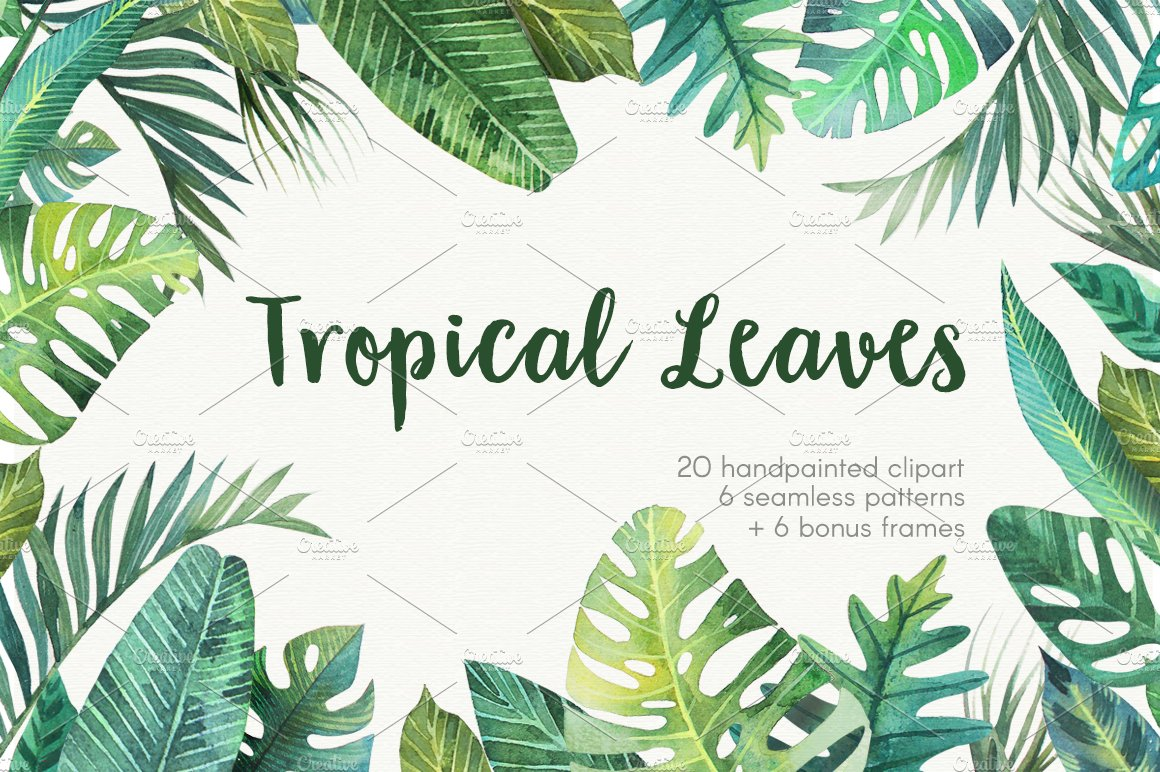 tropical leaves graphic objects creative market