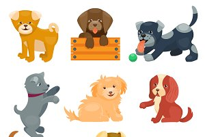 Vector illustration cute dogs