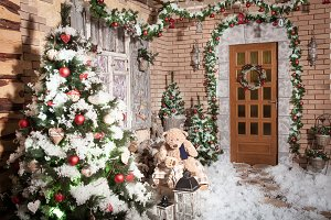 Stumps path leeding to the door of winter house with Christmas wreath