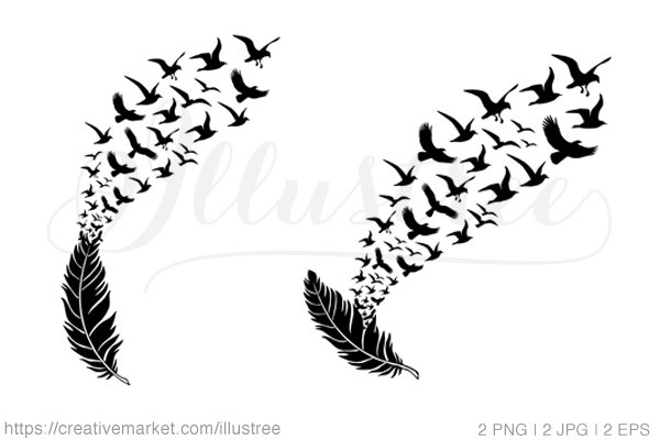 Feather with flying birds, vector ~ Illustrations