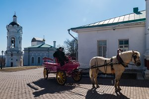 Kolomenskoye museum reserve with the coachman and horse