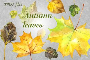 Autumn leaves - watercolor set